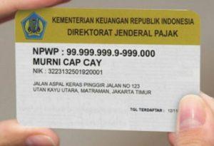 cara daftar npwp online